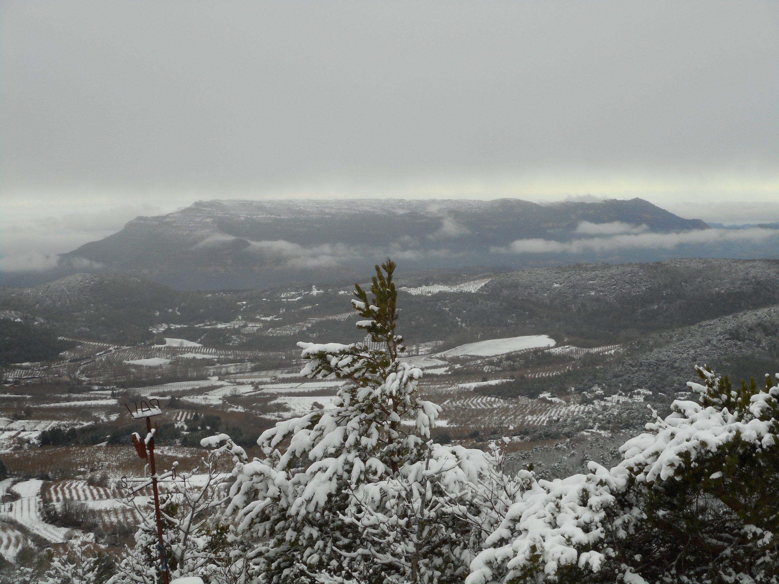 Montsant nevat 2018