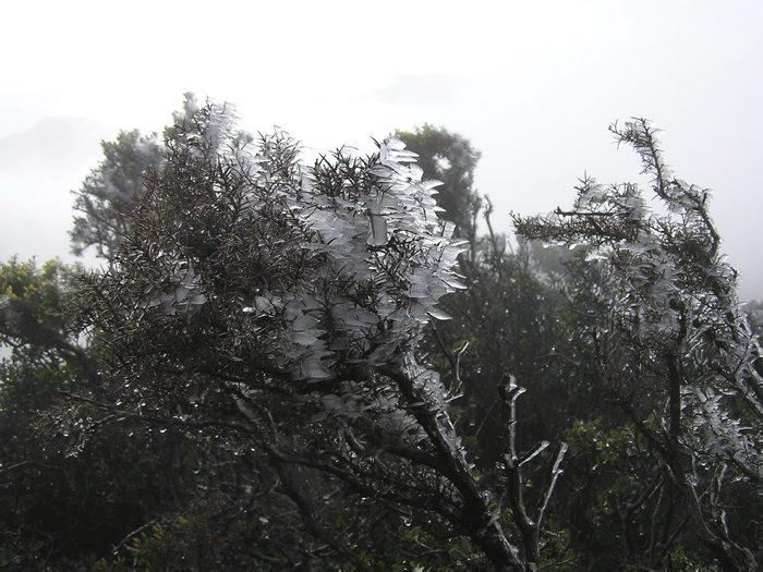 Boira gebradora i pluja gelant